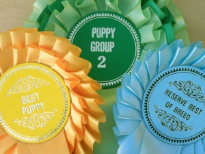 Rosettes - but which show?